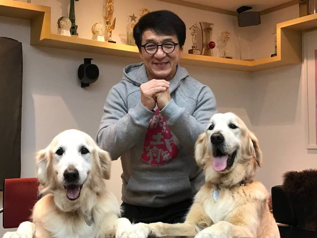 Jackie Chan bowing with two golden retrievers